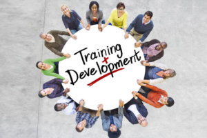software training bangalore